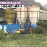 岐阜 豚コレラ違法処理!堆肥にする法律違反!養豚場の出荷先、場所は。