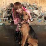 柴一太郎 名前が犬みたい。鍵無くし、イヌほど可愛くない行動、いつから?